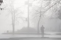 Heavy fog Stock Image