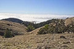 Heavy fog over the Pacifi Ocean in San Francisco. View of the San Francisco Bay Area from the top of Mountain Tamalpais in the Marin County Area, blue sky, fogs stock photography