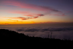 Heavy fog at sunset Stock Images