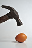 Heavy hammer on the way to crash an egg. Conceptual themes Royalty Free Stock Image