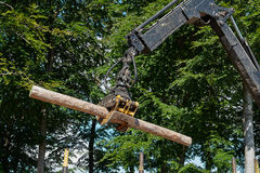 Heavy harvester loader doing forestry work. Heavy harvester loader truck doing forestry work in the forest with logs royalty free stock photo