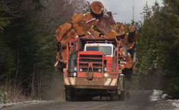 Heavy hauling. Royalty Free Stock Image
