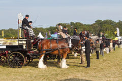 Heavy horse haulage Royalty Free Stock Images