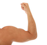 Heavy muscled male arm Royalty Free Stock Photo