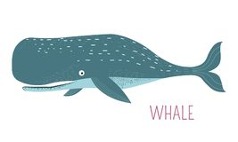 Heavy oceanic whale childish cartoon character. Heavy oceanic whale childish cartoon book character. Enormous mammal that live in water caricature for fairy tale royalty free illustration