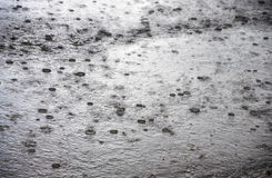 Heavy rain Royalty Free Stock Photo
