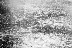 Heavy rain Royalty Free Stock Image
