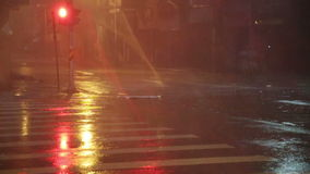 Heavy rain on city street, slow motion. Heavy rain and wind in city during Typhoon Souledor, Taiwan, August 2015 stock video