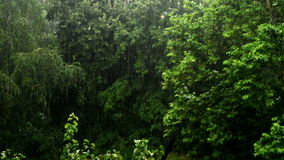 Heavy rain falling in the park, trees in the background. Stock Photo