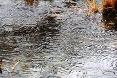 Heavy rain with flood Royalty Free Stock Photos