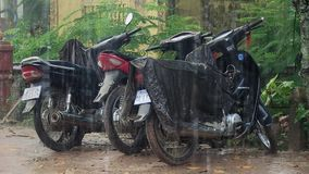 Heavy rain, motorcycles , cambodia, southeast asia Royalty Free Stock Photography