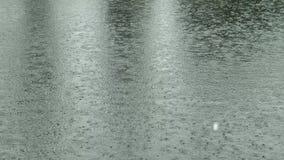 Heavy Rain na powierzchni staw na naturze zbiory wideo