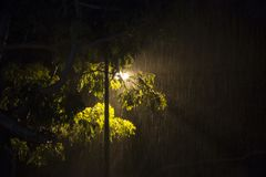Heavy rain during the night Stock Images