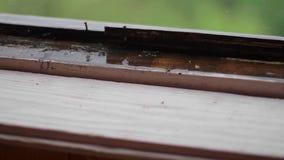 Heavy rain outside the window stock footage