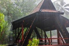Heavy rain Stock Images