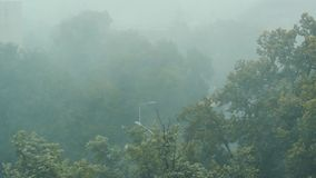 Heavy rain seen through the window; gray and moody weather. Heavy spring rain seen through the window; gray and moody weather stock video footage