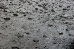 Heavy rain shower Royalty Free Stock Images