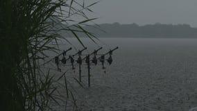 Heavy rain stock footage