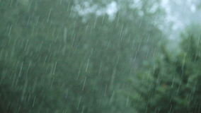 Heavy Rain on a stormy day stock video footage