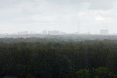 Heavy rain in summer day Royalty Free Stock Photography