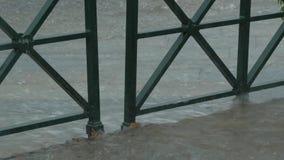 Heavy rain in turin, italy Royalty Free Stock Image