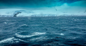 Heavy Seas in the Antarctic. Big waves along the Antarctic Peninsula Stock Images