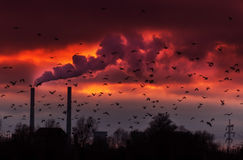 Heavy Smoke From Coal Power Plant Royalty Free Stock Images