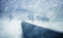 Heavy snofall countryside road with trees Stock Images