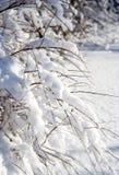 Heavy snow Royalty Free Stock Photo