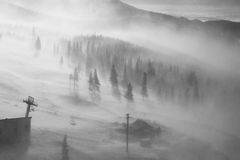 Heavy snow blizzard on mountain slope. Black & white image of heavy snow blizzard on mountain slope, over the trees and chairlift cables stock photos