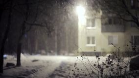 Heavy Snow falling in front of building. Evening