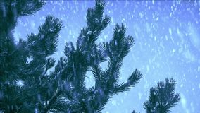 Snow falling in winter time stock video footage