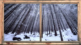Heavy snow falling in wooded area seen through window stock video