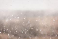 March snow. A heavy snow fell on March 19, 2013, in Junction City, Kansas Royalty Free Stock Photos
