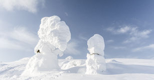 Heavy snow. In Finland at Valtavaara Stock Images