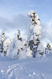 Heavy snow. In Finland at winter time Stock Image