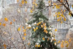 Heavy snow in Moscow. With big snowflakes stock photography