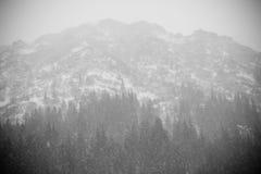 Heavy Snow mountain Stock Photos