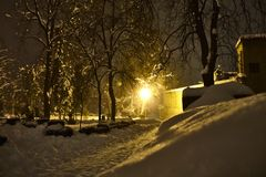 Heavy snow in park with lamp light. Heavy snow in a park, snowy trees, a sodium warm light lamp in the middle Stock Image