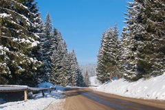 Heavy snow on the road Royalty Free Stock Photography