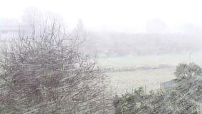 Heavy snow in Viterbo in Italy. stock video