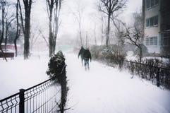 Heavy snowfall Stock Image