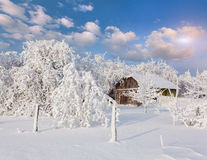Heavy snowfall covered the trees and houses in village. Stock Photos