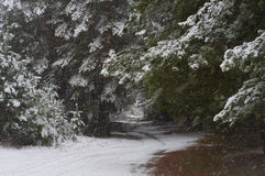 Heavy snowfall Stock Photos