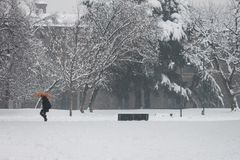 Heavy snowfall and girl with umbrella. Heavy snowfall in a city park and girl walking with an orange umbrella Stock Photos