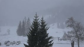 Snowfall in Kalser valley, Austria. Heavy snowfall with gusts of strong wind in the remote Kalser Valley in the Hohe Tauern nature reserve of Tirol, Austria stock footage