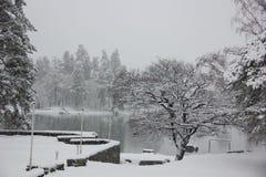 Heavy snowfall at the lake Royalty Free Stock Photos