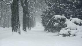 Heavy Snowfall Lake-Effect Snow stock footage