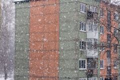 A heavy snowfall lights old red basil, royalty free stock image