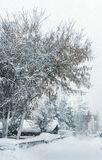 Heavy snowfall, poor visibility. Winter. Alps, Austria Royalty Free Stock Photography